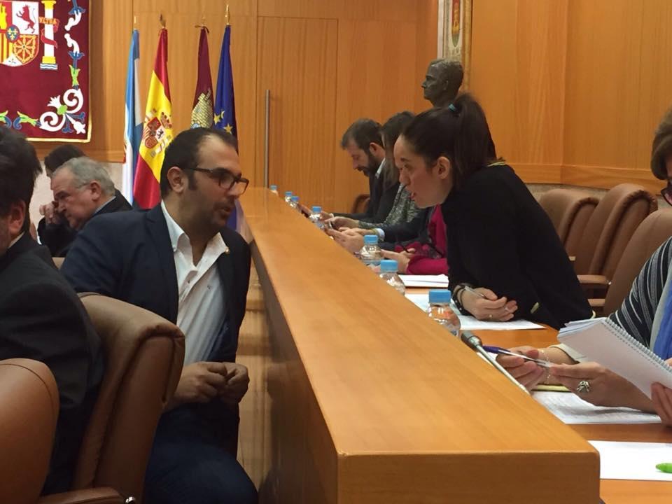 El plan de formación propuesto por Cs Talavera y destinado a docentes para luchar contra el acoso escolar, ha sido aprobado por el Ayuntamiento de Talavera