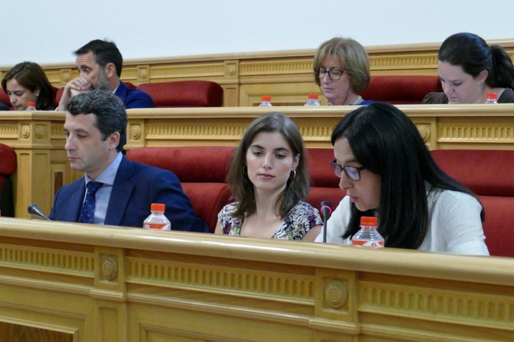 El Pleno del Ayuntamiento de Toledo aprueba la moción de Cs para mejorar los patios de los colegios públicos